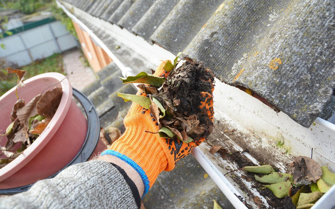 cleaning gutters is part of basic home maintenance